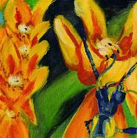 https://picasaweb.google.com/106829846057684010607/FlowersArchidomFireflyBug#6090814653802627442
