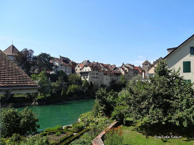 passeando - Passeando pela Suíça - 2012 - Página 14 DSC04953