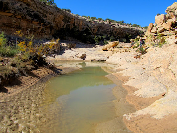 Pool in Nate's Canyon