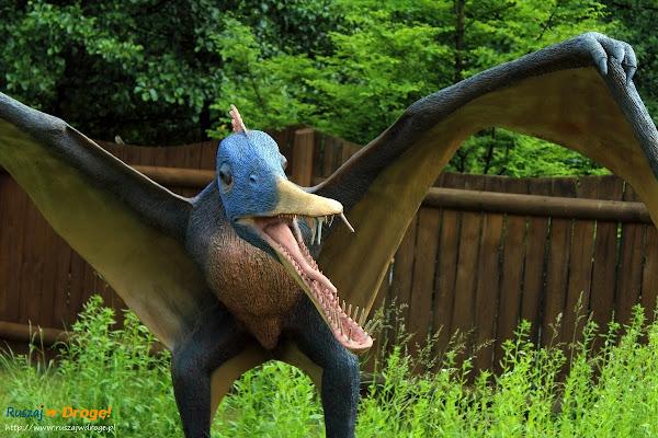 bałtów jura park  - pterodaktyl