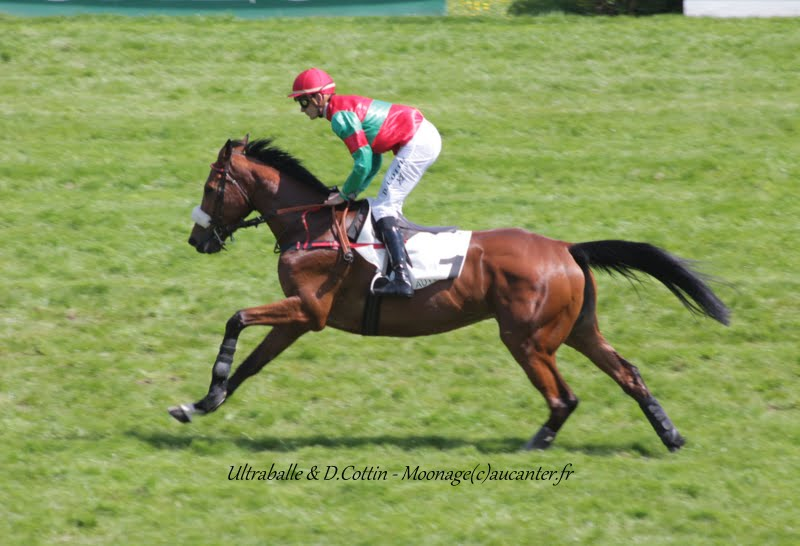 Photos Auteuil 22-05-2015 IMG_0803