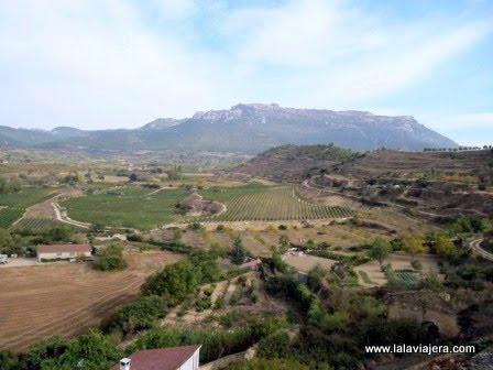 Vista de los viñedos y el Monte Toloño, Labastida