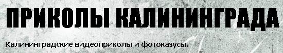 Приколы Калининграда