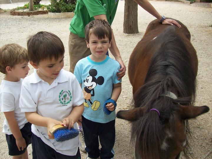 niños con poni