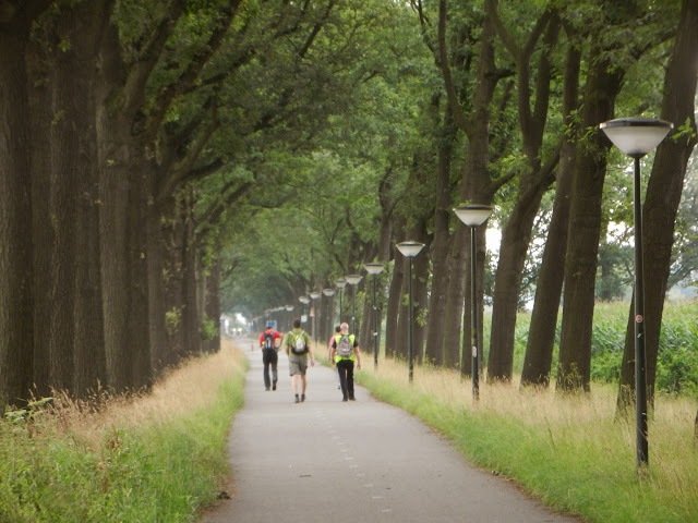 100/110km de la Campine (Kempenlandtocht; NL):1-2/8/2014 Geldrop%252C%25200203-08-13%2520112