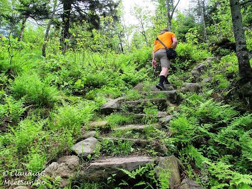 Tura la munte in Canada. Mont Orford.  trepte, trepte...
