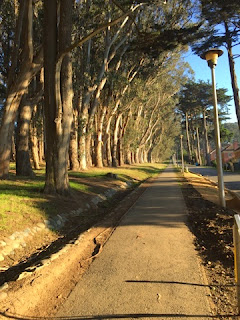 Lover's lane presidio