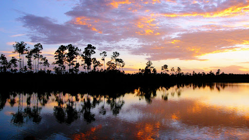Everglades National Park at Sunset, Florida.jpg
