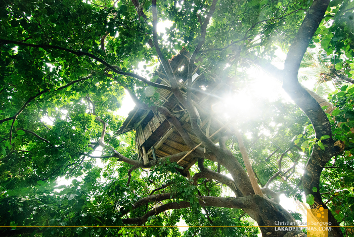 Tree House at Tikling Island in Matnog, Sorsogon