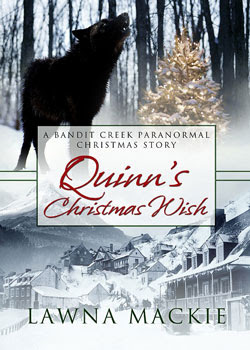 Quinn's Christmas Wish cover