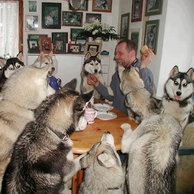Nice photos of animals and humans. #komedie #animals #humor...