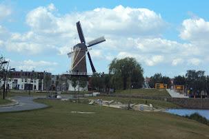 Marche Kennedy (80km) de Etten-Leur (NL) :11-12 mai 2012 DSC03053