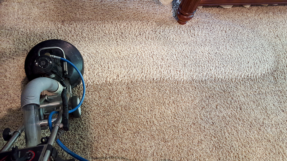 carpeting being cleaned using hot water extraction