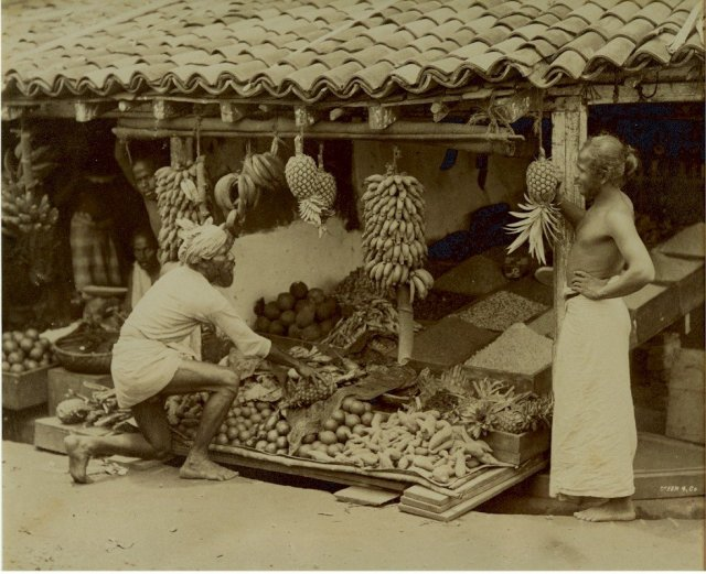 Vegetable and Fruit Merchant - Ceylon (Sri Lanka)