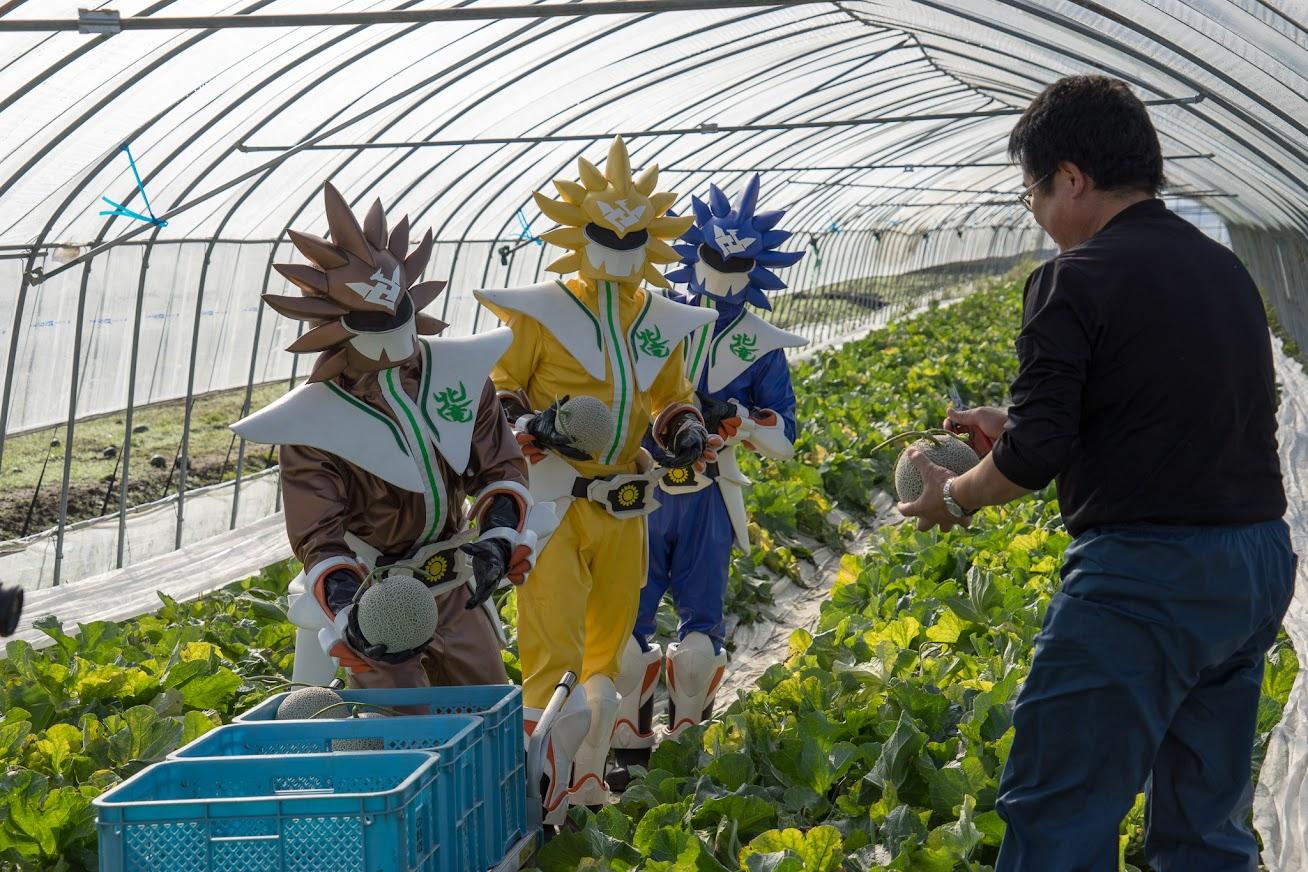 北海道指導農業士・渡邊靖範氏より収穫のご指導