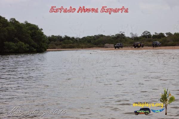 Playa Boca de Palo NE120, Estado Nueva Esparta, Tubores