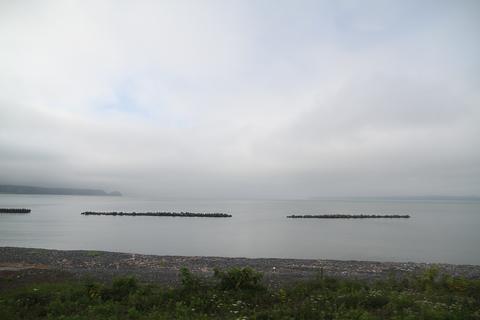 JR北海道 キハ54 516 「快速はなさき」 車窓 厚岸付近