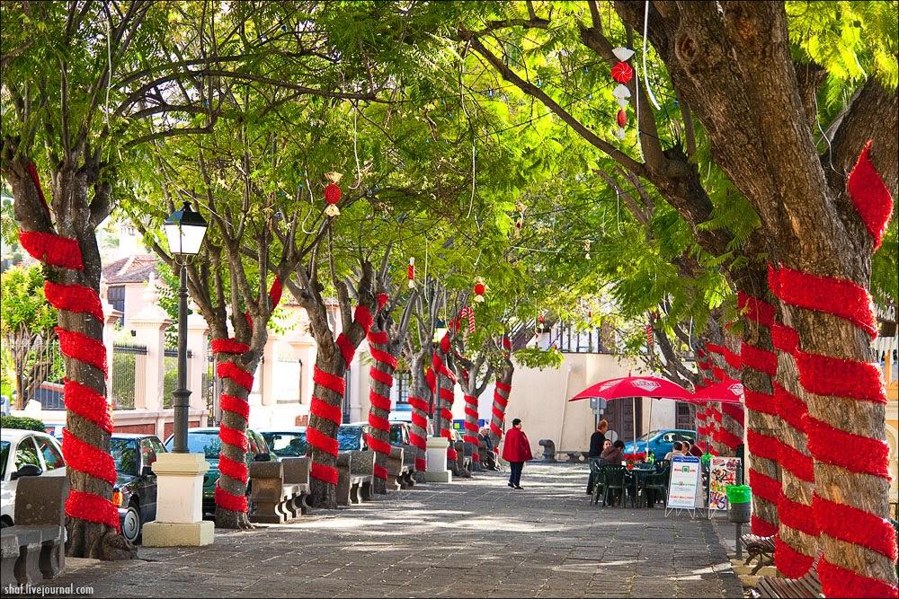 http://lh5.googleusercontent.com/-rodjHW56Zng/VII-6k1svJI/AAAAAAAALpg/2nHkyFnX6DM/s1600/20081221_449_Tenerife-La_Orotava.jpg