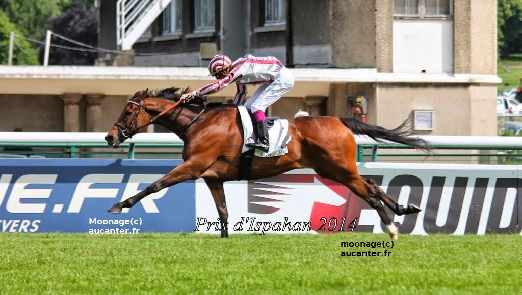 Photos Longchamp 25-05-2014 IMG_1325