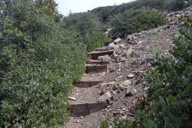 trail with built steps