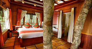 Best Resorts in Wayanad