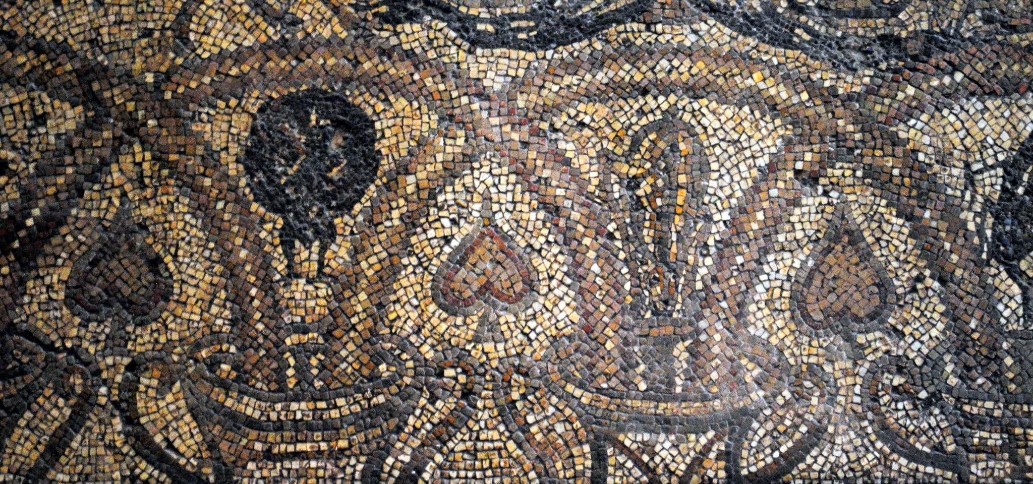 Ancient Mosaics from North Africa Photos