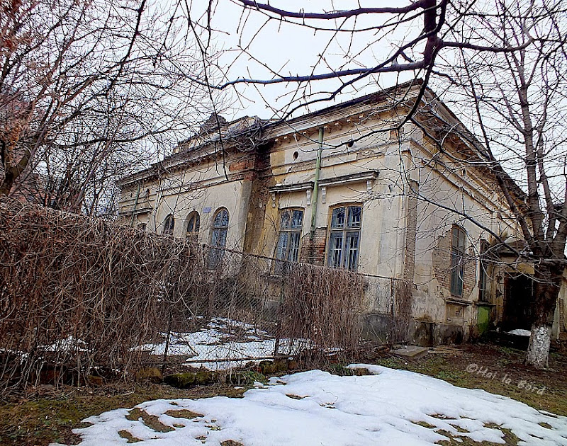 sinagoga cismarilor iasi