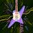 Ryan Martin avatar image