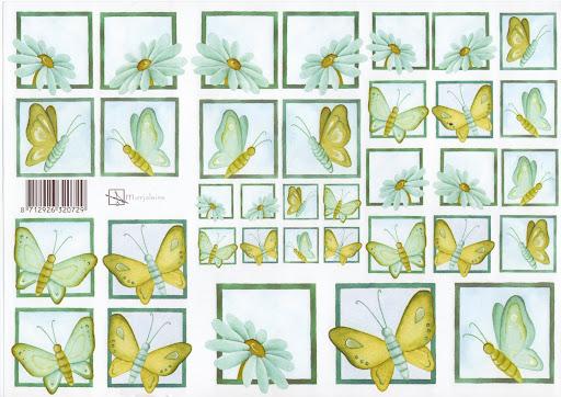 vlinder en bloem.jpg