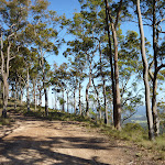 Georges Road in Congewai Valley (361478)