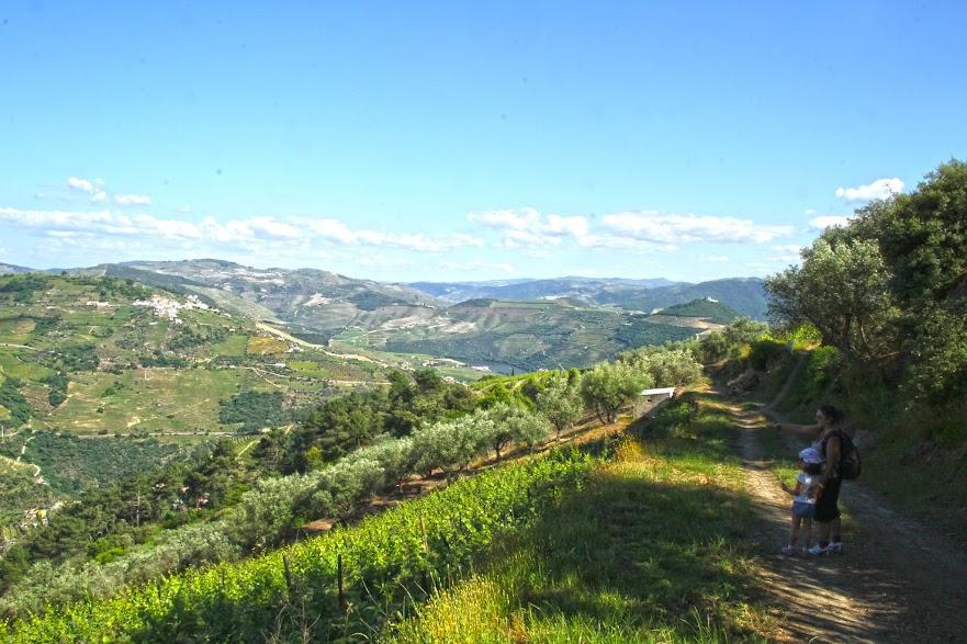 Trilho S. Cristóvão do Douro, um percurso pedestre para explorar o Douro vinhateiro | Portugal