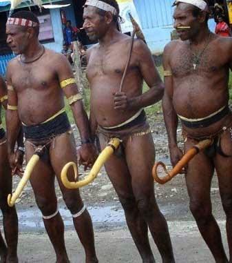 Одежда папуасов