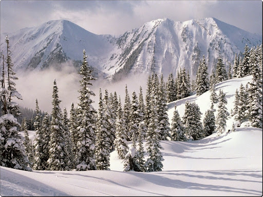 Winter Wonderland, British Columbia, Canada.jpg