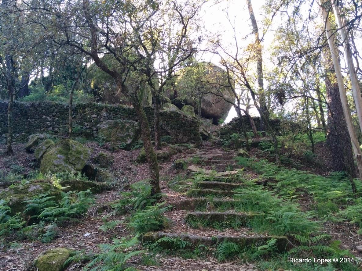 Castelo de Faria