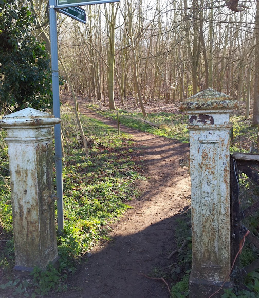 Entrance to badger wood