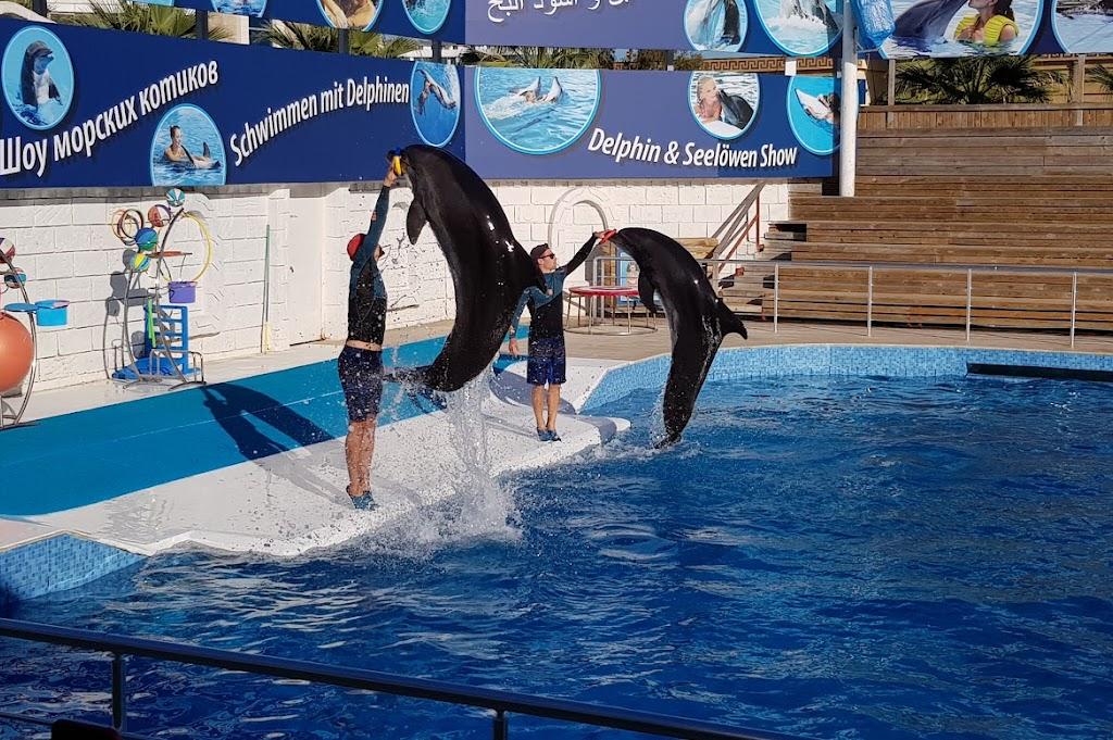Aksu Dolphinarium / Kundu Antalya