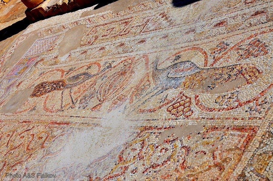 Экскурсия в Негев, Мамшит, фрагмент мозаики в византийской церкви святого Нила