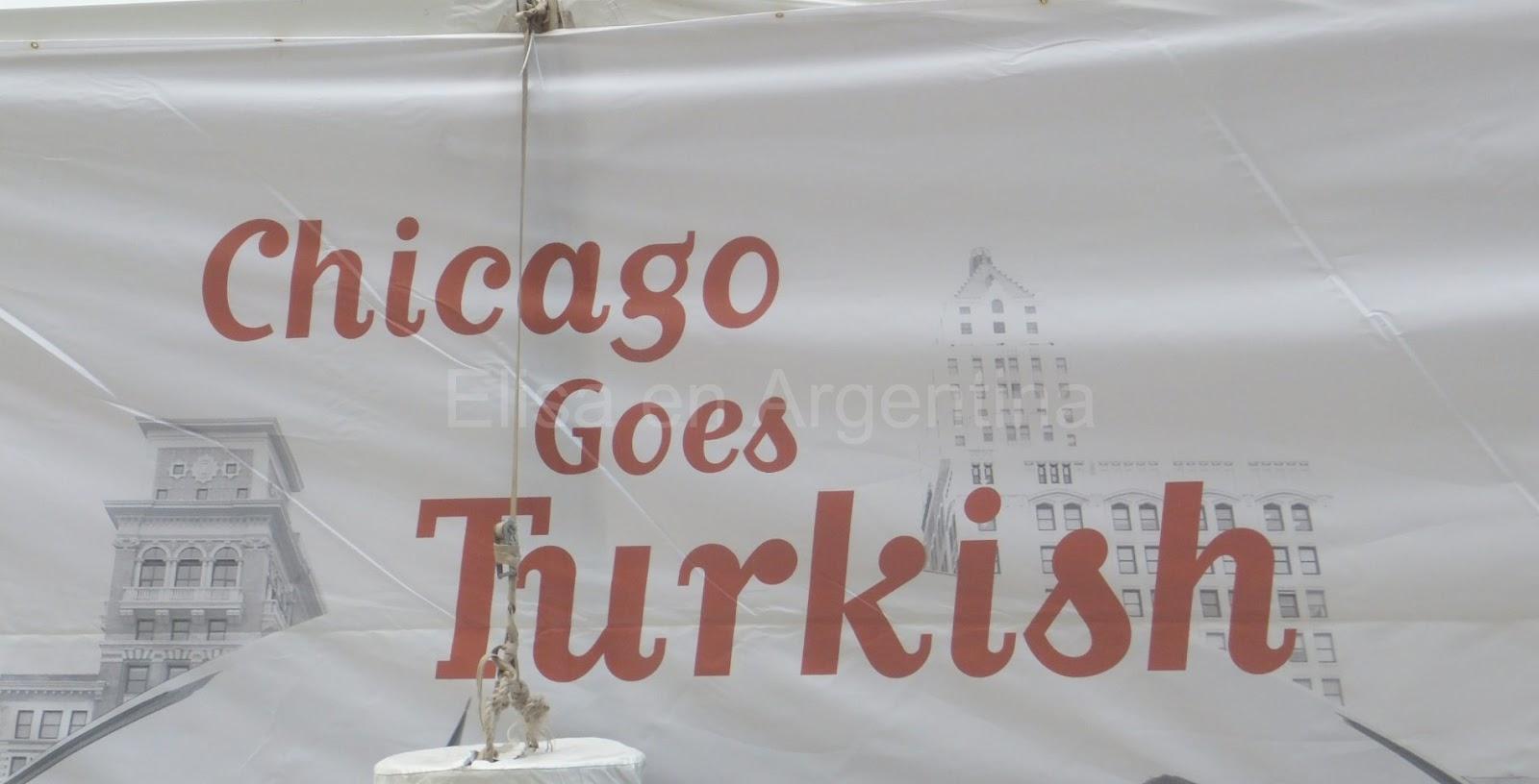 Picasso, Chicago, Elisa N, Blog de Viajes, Lifestyle, Travel