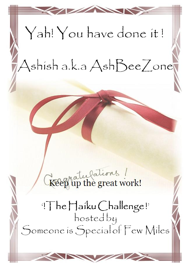 The Haiku Challenge Completion Award