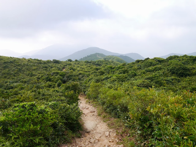 Dragon's Back trail in Hong Kong