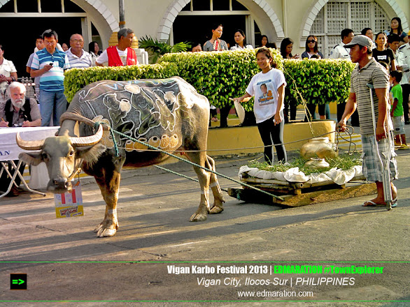 Vigan Karbo Festival | Of Carabao, Glasses and Seeds (2013)
