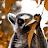 owen connors avatar image