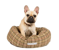 Stylish Donut Dog Beds | Luxury Donut Dog Beds | Chelsea Dogs