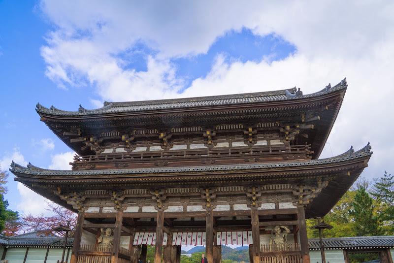 京都 紅葉 仁和寺 写真1