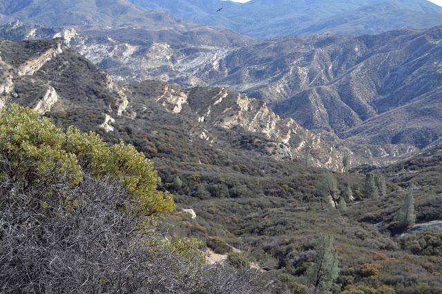 Sulphur Spring Canyon