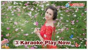 Karaoke - Hoa Mười Giờ