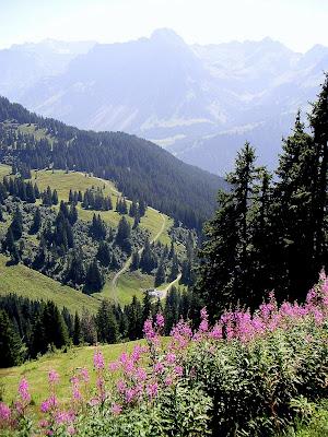 Blick vom Diedamskopf Bregenzerwald Vorarlberg Au