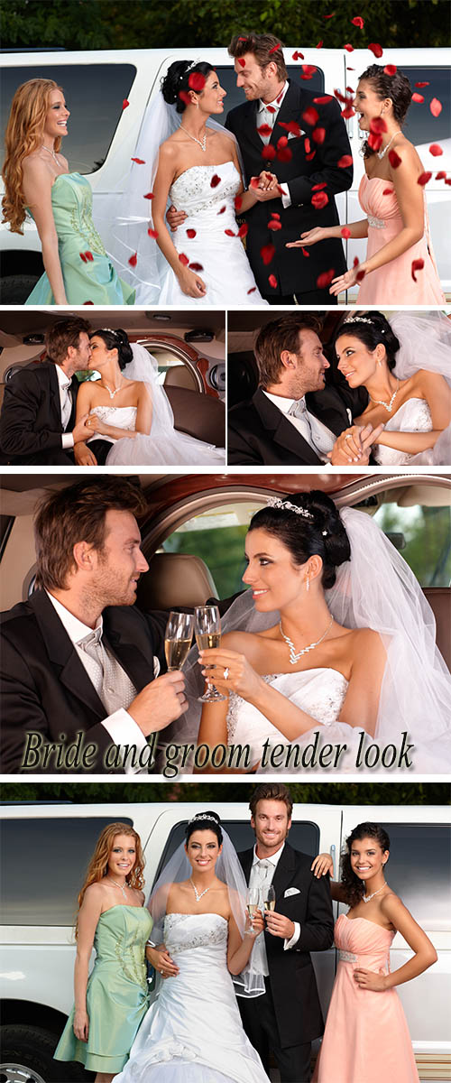 Stock Photo: Newlyweds and wedding limousine