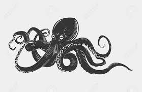 Image result for OCTOPUS ILLUSTRATIONS CARTOONS