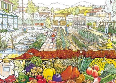Fiori piante e giardini del mondo l 39 orto suggerimenti su for Cosa seminare a febbraio